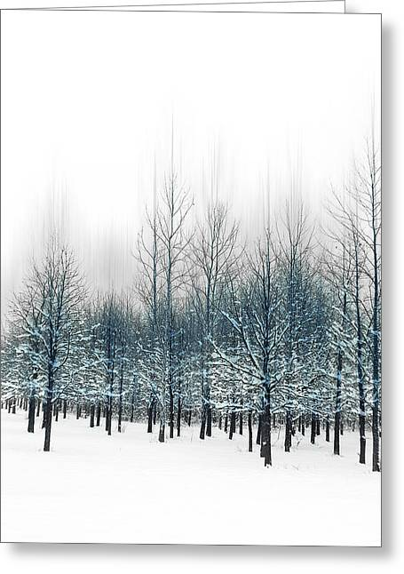 Indiana Winters Digital Art Greeting Cards - Blue Trees Greeting Card by Michael Huddleston
