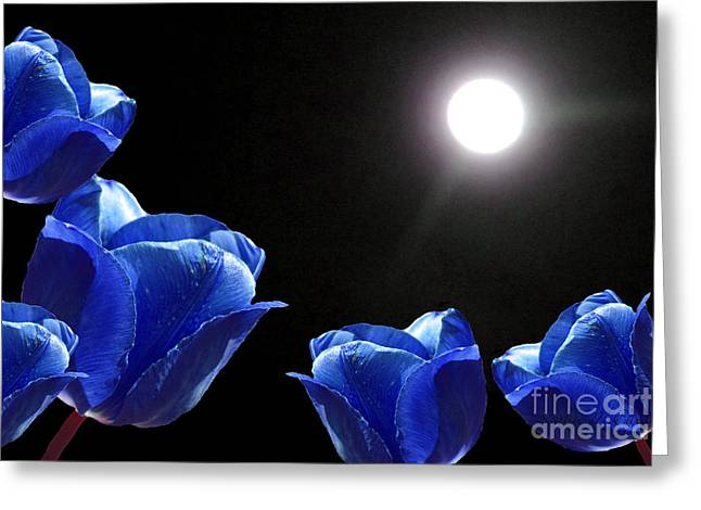 Ohio ist Digital Greeting Cards - Blue Tulips in the Moonlight Greeting Card by Kathie McCurdy
