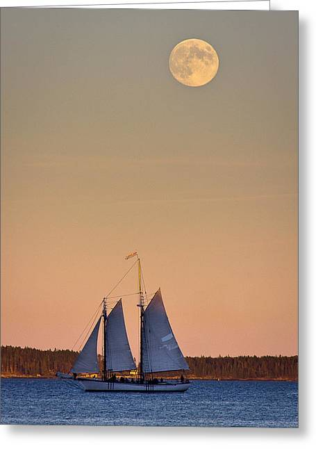 Harvest Moon Greeting Cards - Blue under a Yellow Moon Greeting Card by Benjamin Williamson
