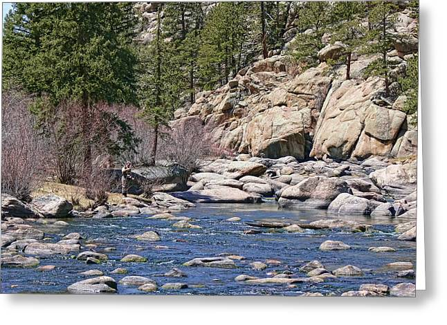 Fly Fisherman Greeting Cards - Fly Fishing the Platte River Colorado  Greeting Card by Jennie Marie Schell