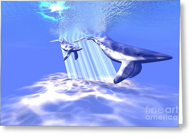 Sea Creature Pictures Greeting Cards - Blue Whales Greeting Card by Corey Ford