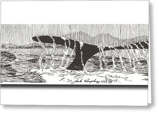 Full Body Drawings Greeting Cards - Blue Whales Tail Greeting Card by Jack Pumphrey