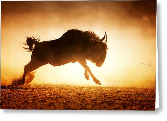 Blue Wildebeest Running In Dust Greeting Card by Johan Swanepoel