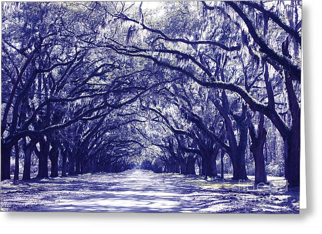 Streaming Light Greeting Cards - Blue World in Savannah Greeting Card by Carol Groenen