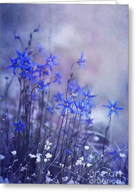 July Greeting Cards - Bluebell Heaven Greeting Card by Priska Wettstein