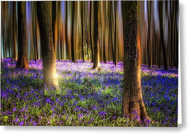 Landscape. Scenic Greeting Cards - Bluebell Magic Greeting Card by Ian Hufton