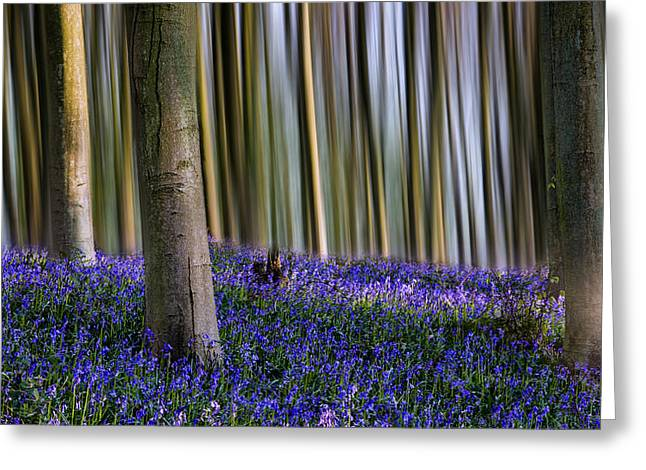 Woodland Scenes Greeting Cards - Bluebell Woodland Art Greeting Card by Ian Hufton