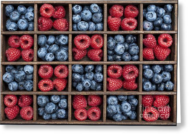 Blueberries And Raspberries  Greeting Card by Tim Gainey