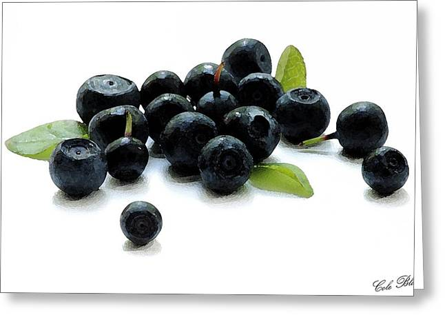 Canvas Wine Prints Drawings Greeting Cards - Blueberries Greeting Card by Cole Black