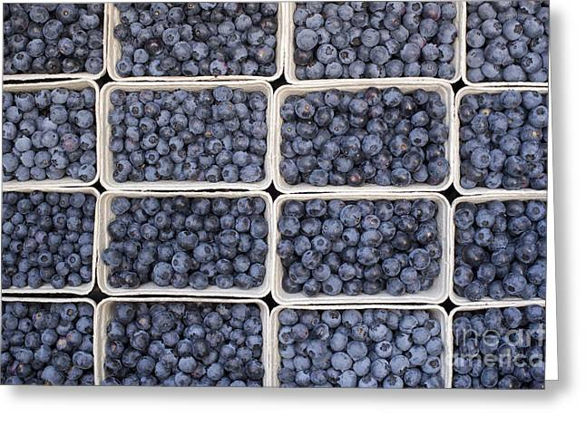 Fiber Greeting Cards - Blueberries Greeting Card by Tim Gainey