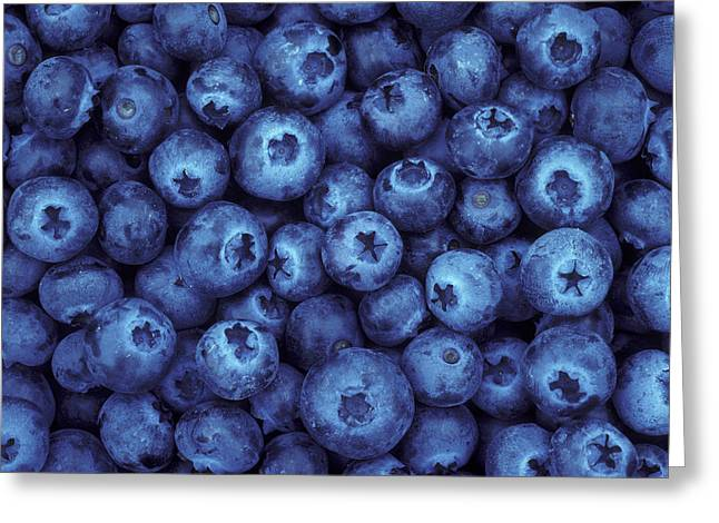 Blueberry Harvest Greeting Card by Greg Vaughn