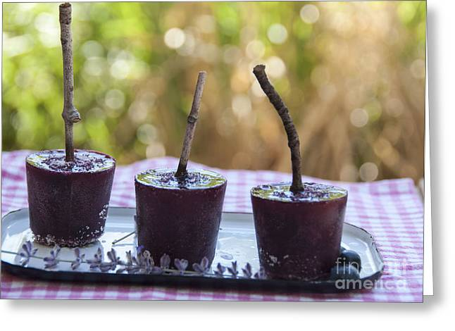 Blueberries Greeting Cards - Blueberry Ice Pops Greeting Card by Juli Scalzi