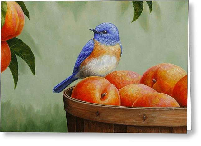 Song Birds Greeting Cards - Bluebird and Peaches Greeting Card 3 Greeting Card by Crista Forest