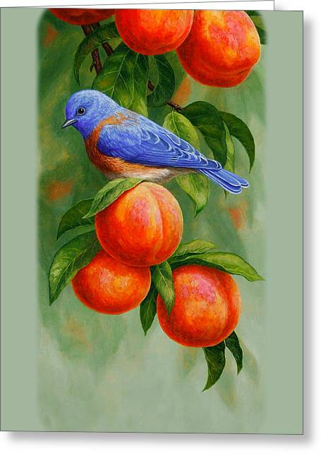 Song Birds Greeting Cards - Bluebird and Peaches iPhone Case Greeting Card by Crista Forest