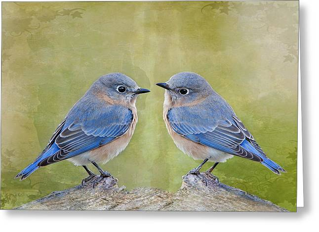 Eastern Bluebird Greeting Cards - Bluebirds of Happiness Greeting Card by Bonnie Barry
