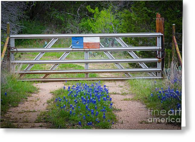 Gravel Greeting Cards - Bluebonnet Gate Greeting Card by Inge Johnsson