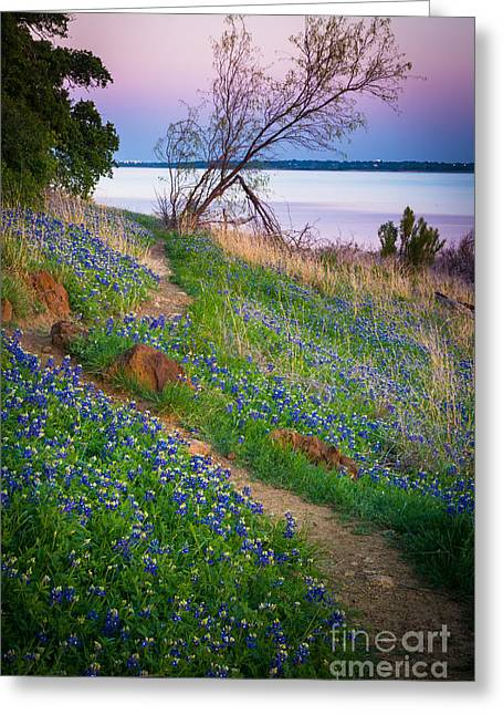 Bluebonnet Path Greeting Card by Inge Johnsson