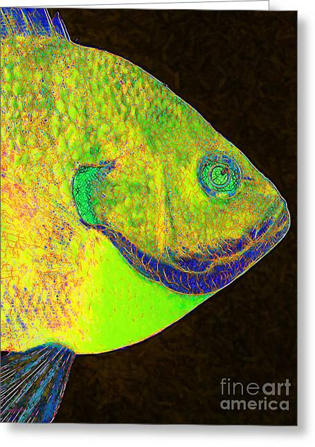 Bluegill Greeting Cards - Bluegill Fish p28 Greeting Card by Wingsdomain Art and Photography