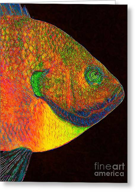 Bluegill Greeting Cards - Bluegill Fish Greeting Card by Wingsdomain Art and Photography