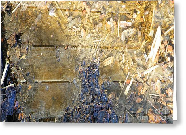 Bluegold woodshed flooring Greeting Card by Brian Boyle