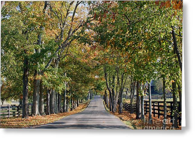 Keeneland Greeting Cards - Bluegrass Fall Greeting Card by Roger Potts
