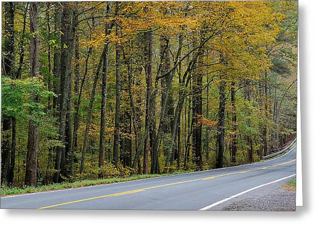Rockbridge County Greeting Cards - Blueridge Parkway Virginia Greeting Card by Todd Hostetter