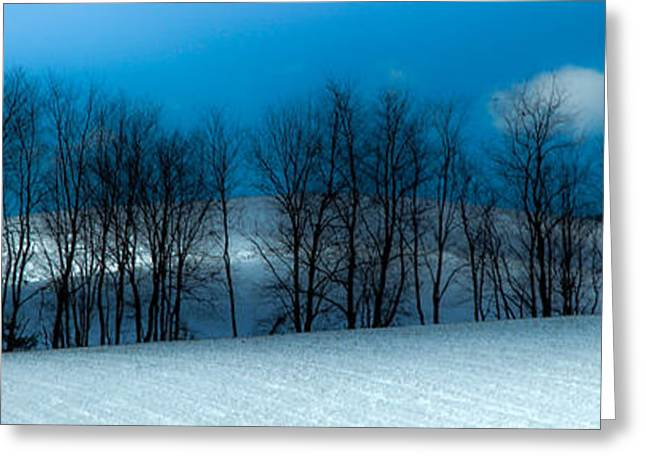 Snow Scene Landscape Greeting Cards - BLUES of WINTER Greeting Card by Karen Wiles