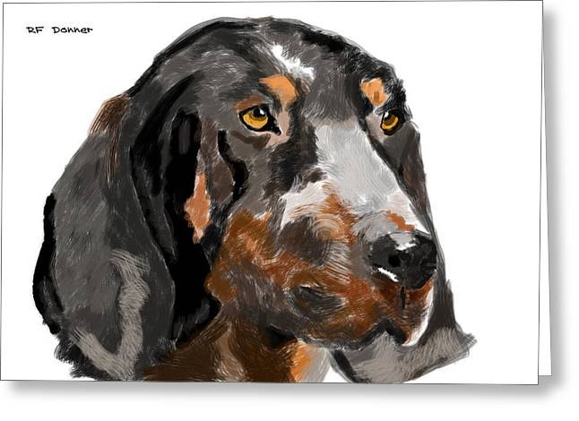 Owner Digital Art Greeting Cards - Bluetick hound Greeting Card by Bob Donner
