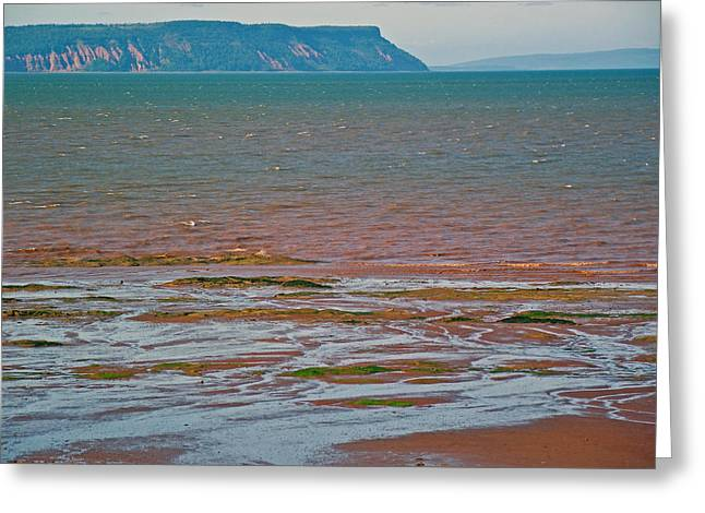 Minas Basin Greeting Cards - Bluff over Minas Basin in Afternoon at Fundy Bay near Grand Pre-NS Greeting Card by Ruth Hager