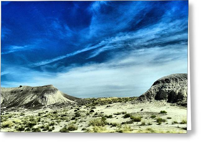 Petrified Forest National Park Greeting Cards - Blur Greeting Card by Dan Sproul