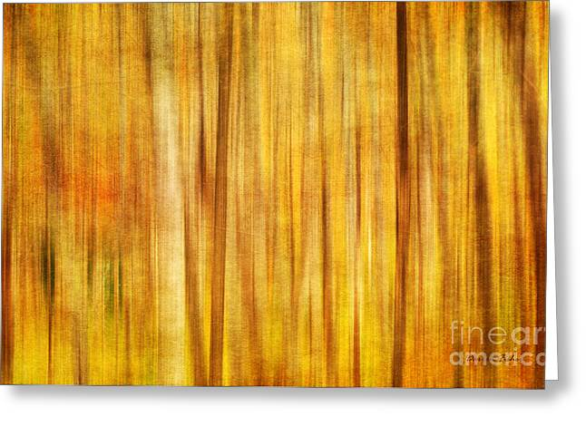 Warm Tones Photographs Greeting Cards - Blurred Lines Greeting Card by Darren Fisher