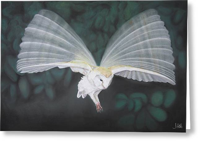 Blur Drawings Greeting Cards - Blurred Wings Greeting Card by John Hebb