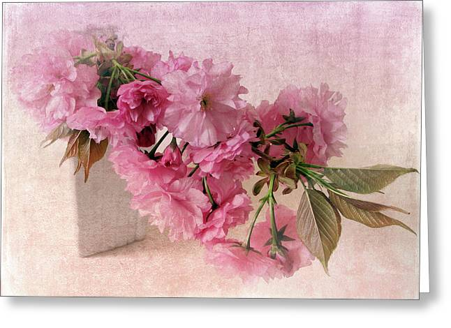 Pink Flower Branch Digital Art Greeting Cards - Blush Blossom Greeting Card by Jessica Jenney