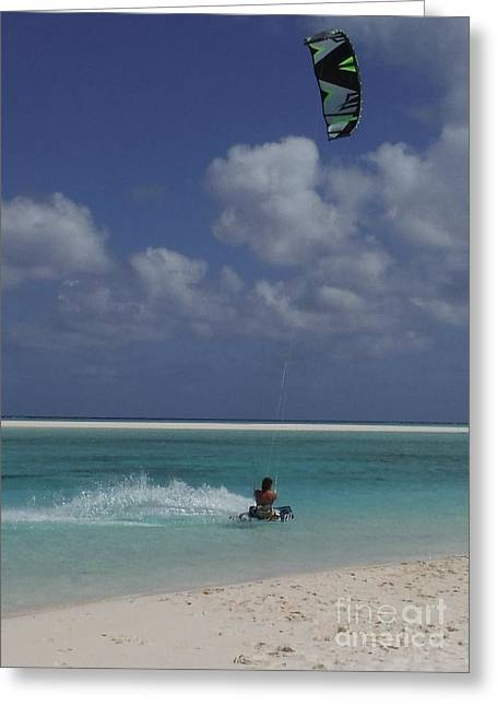 Kite Greeting Cards - Board Zoom Greeting Card by Barbie Corbett-Newmin