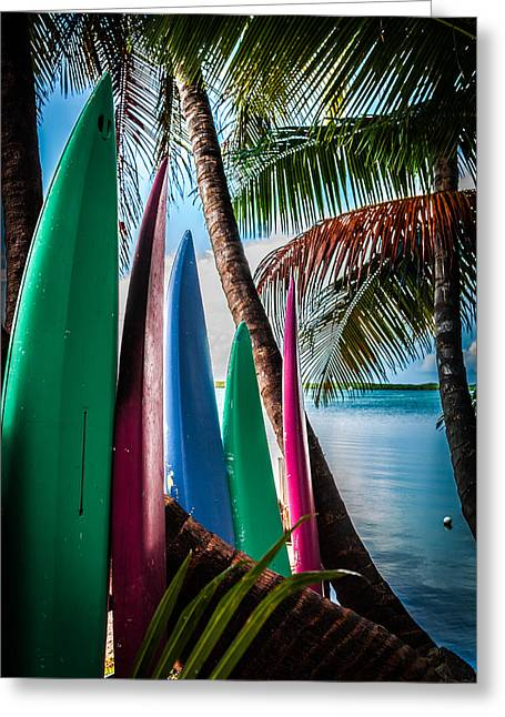 Surfing Board Greeting Cards - BOARDS of SURF Greeting Card by Karen Wiles