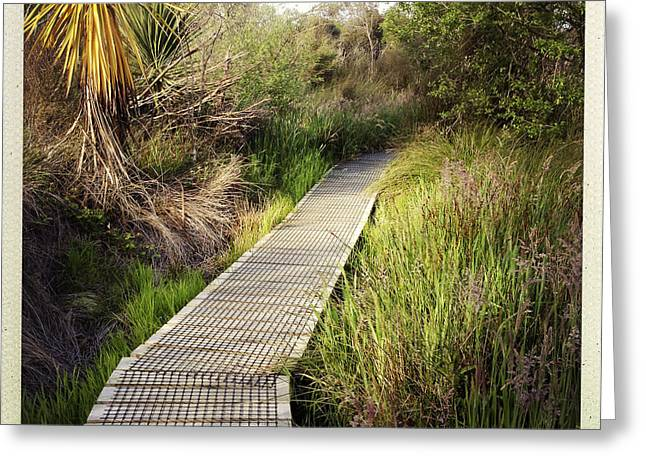 Boardwalk Greeting Cards - Boardwalk  Greeting Card by Les Cunliffe