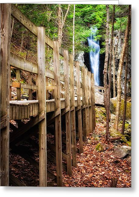 Shannon Greeting Cards - Boardwalk To Song  Greeting Card by Jeff Sinon