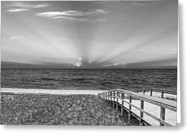 Boardwalk to the Sea Greeting Card by Michelle Wiarda