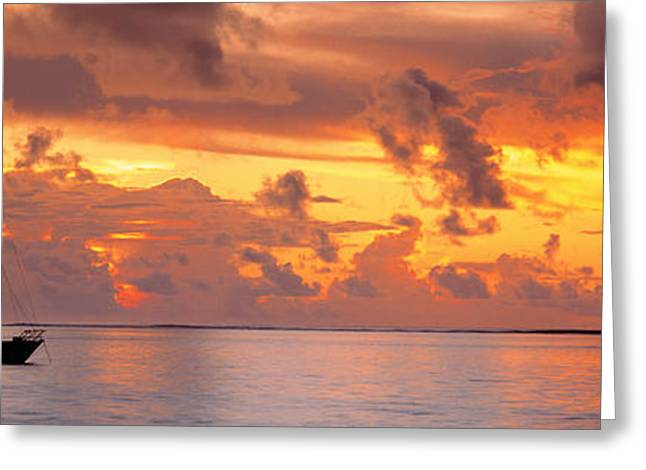 One Sailboat Greeting Cards - Boat At Sunset Greeting Card by Panoramic Images