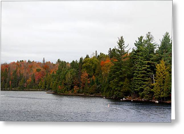 Boat In Canoe Lake, Algonquin Greeting Card by Panoramic Images