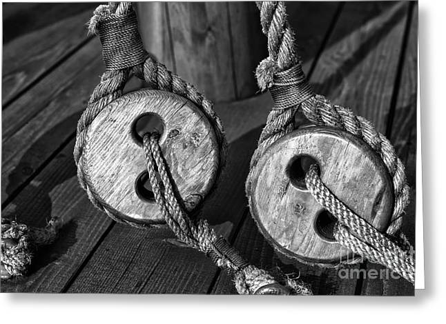 Boats In Harbor Greeting Cards - Boat Rope in Vancouver Greeting Card by John Rizzuto