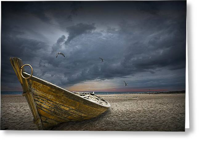 Randy Greeting Cards - Boat with gulls on the beach with oncoming storm Greeting Card by Randall Nyhof
