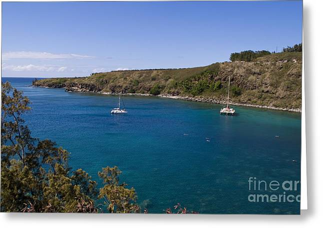 Blue Sailboats Greeting Cards - Boats And Divers Maui, Hawaii Greeting Card by Bill Bachmann