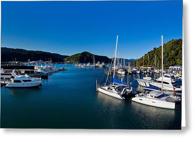 Masts Greeting Cards - Boats At A Harbor, Picton, Marlborough Greeting Card by Panoramic Images