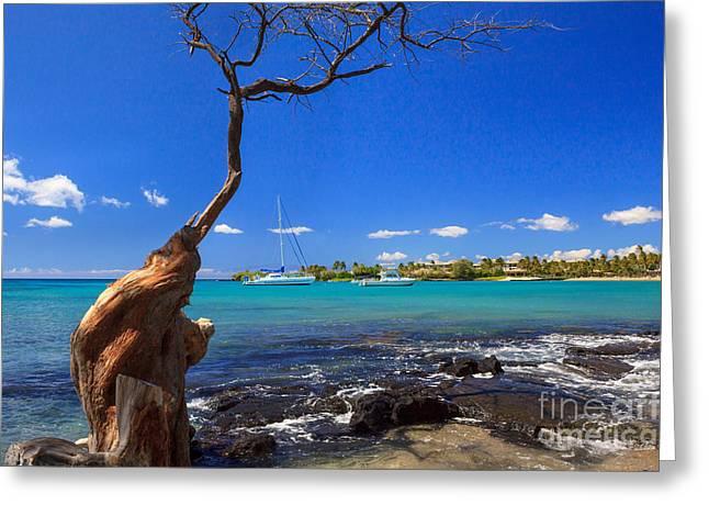 Boats At Anaehoomalu Bay Greeting Card by James Eddy