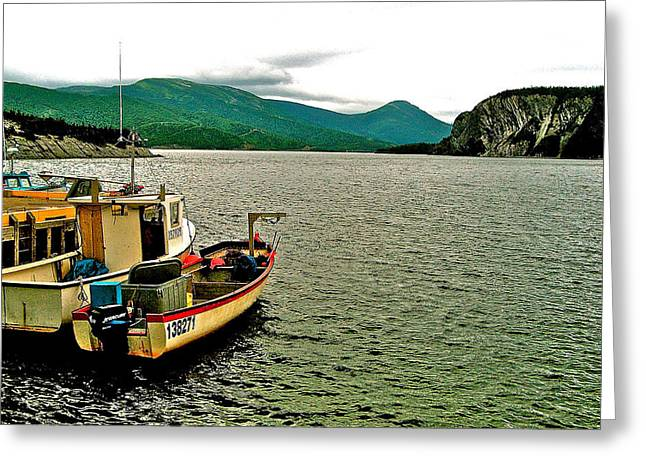 Boats At Dock Greeting Cards - Boats at Norris Point on Bonne Bay in Gros Morne NP-NL Greeting Card by Ruth Hager
