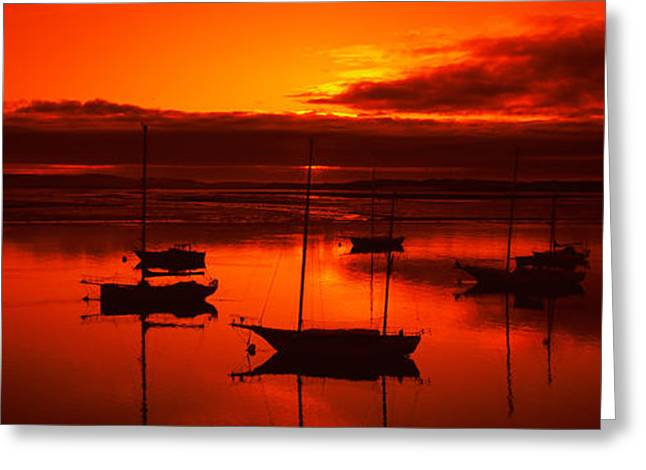 Morro Bay Greeting Cards - Boats In A Bay, Morro Bay, San Luis Greeting Card by Panoramic Images