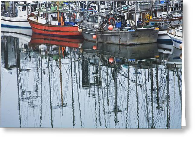 Water Vessels Greeting Cards - Boats in a Harbor on Vancouver Island Greeting Card by Randall Nyhof