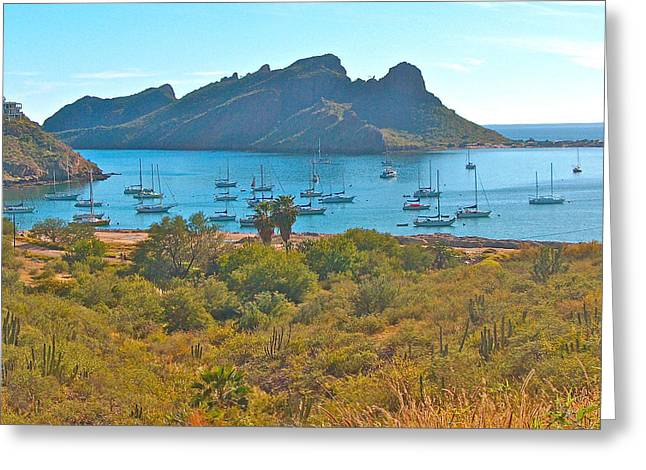 Boats In Harbor Digital Art Greeting Cards - Boats in San Carlos Harbor-Sonora-Mexico Greeting Card by Ruth Hager