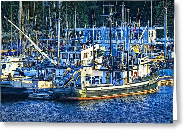 Water Vessels Greeting Cards - Boats in Victoria Harbor on Vancouver Island Greeting Card by Randall Nyhof